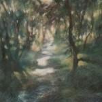Truro Woods - Bosco di Truro